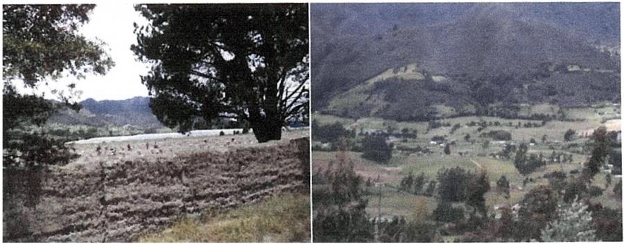 Finca - Lote Ayacucho No 3 - Suesca